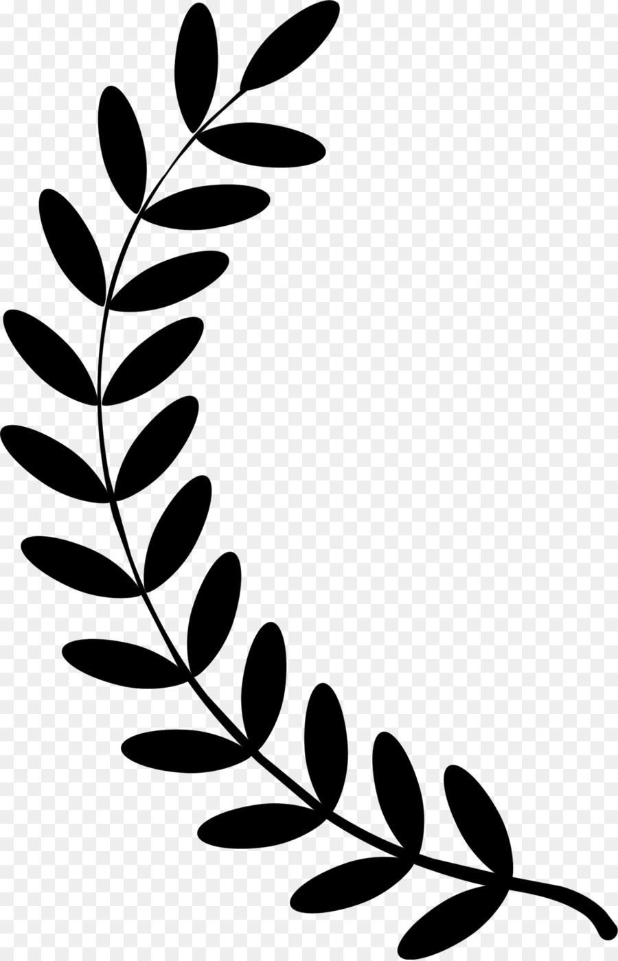 Olive leaf clipart black and white library Olive Leaf Drawing | Free download best Olive Leaf Drawing ... black and white library