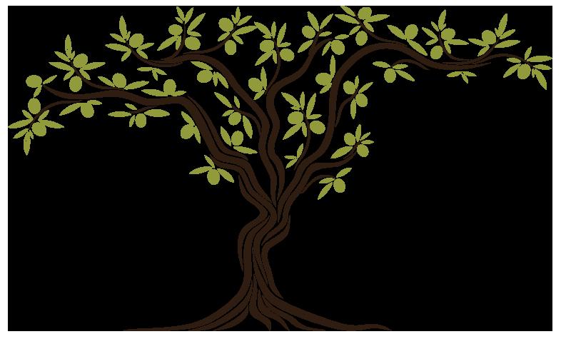 Olive tree clipart png library stock STEFAS MEDITERRANEAN FOODS WEBSITE | EUROPE | Stefas Mediterranean ... png library stock