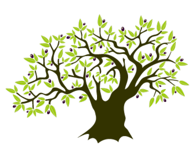 Olive tree clipart freeuse download Olive Tree Clipart 13 - 450 X 470 | carwad.net freeuse download