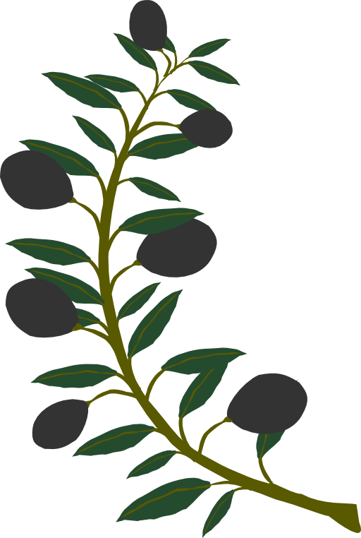Tree with branches clipart clipart transparent download 28+ Collection of Olive Tree Branch Clipart | High quality, free ... clipart transparent download