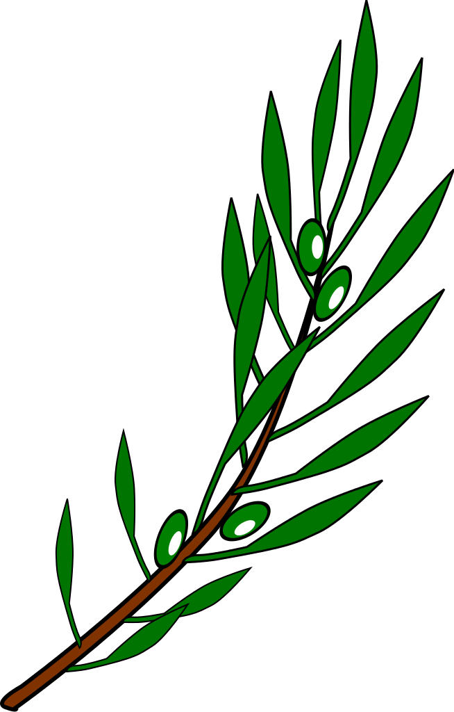 Olive tree clipart free graphic transparent stock File:Olive branch drawing.svg - Wikimedia Commons graphic transparent stock