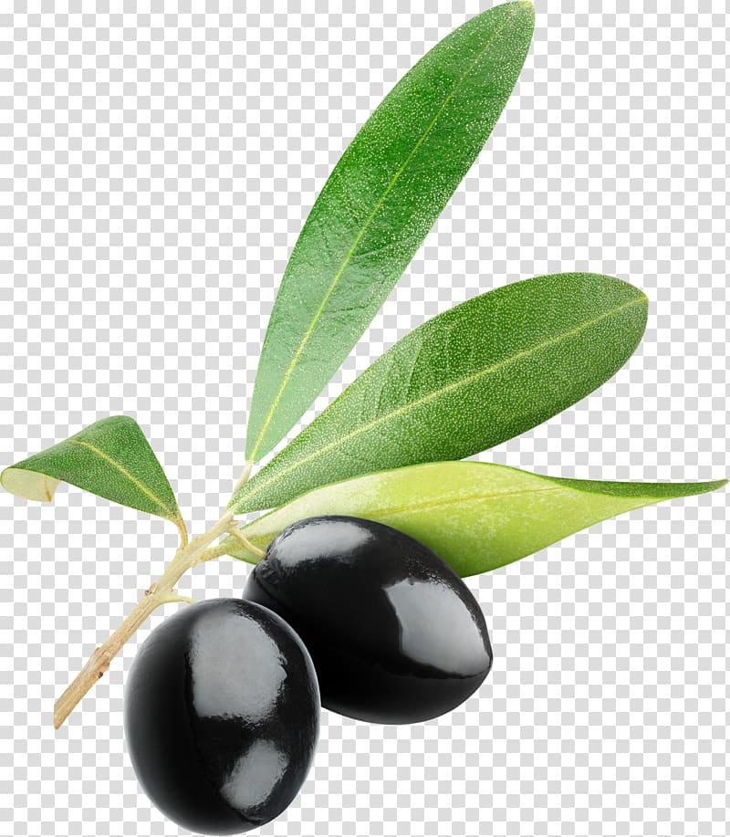 Olives clipart clipart freeuse library Two black fruits, Olive Icon , Black olives transparent ... clipart freeuse library