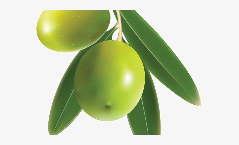 Olives clipart clip art library download Olive Clipart - Green Mango With Leaf #1042916 - Free ... clip art library download