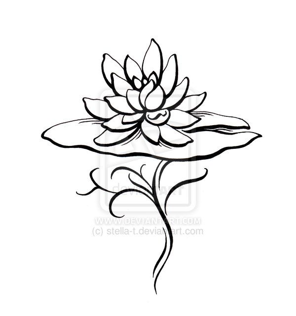 Once upon a lily pad clipart black & white jpg royalty free download Water Lily Drawing | Water Lily Tatoo Design by stella-t ... jpg royalty free download