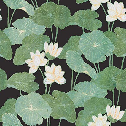Once upon a lily pad clipart black & white banner transparent download RoomMates Black Lily Pads Peel and Stick Wallpaper banner transparent download