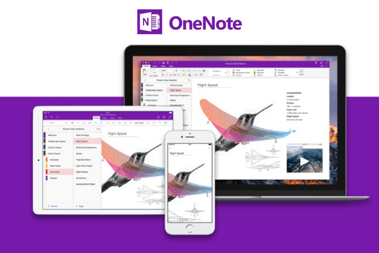 Onenote clipart jpg freeuse Insert Images and Attach Files in Microsoft OneNote jpg freeuse
