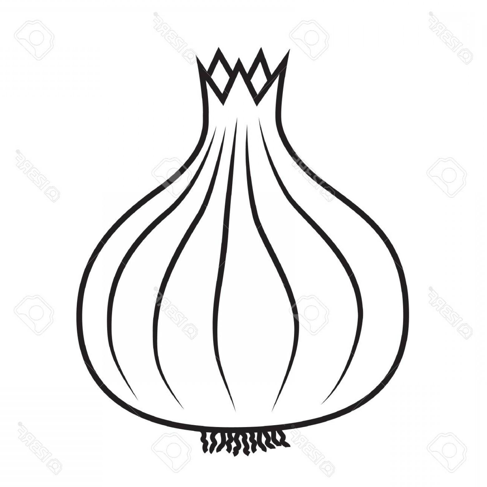 Onion vector clipart graphic transparent download Onion Vector | Savoyuptown graphic transparent download