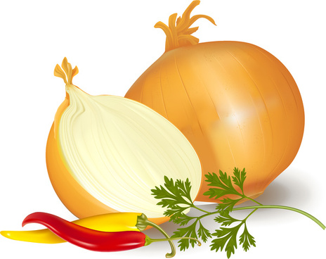 Onion vector clipart graphic black and white download Onion free vector download (153 Free vector) for commercial ... graphic black and white download