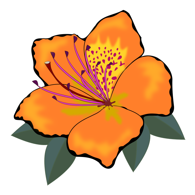 Orange flower clipart png black and white download 28+ Collection of Orange Flower Clipart | High quality, free ... png black and white download