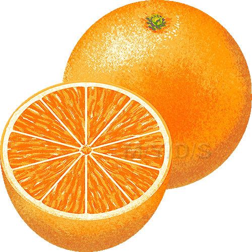 Orange pictures clipart jpg freeuse stock Orange Clip Art Free | Clipart Panda - Free Clipart Images jpg freeuse stock