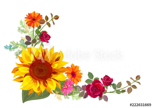 Orange yellow and white roses clipart svg transparent Angled autumn\'s frame: orange, yellow sunflowers, red roses ... svg transparent