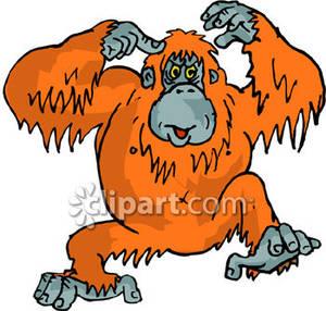 Orangutan clipart free clip art royalty free library Orangutan Clip Art Free | Clipart Panda - Free Clipart Images clip art royalty free library