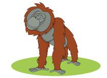 Orangutan clipart free black and white download Free Orangutan Clipart - Clip Art Pictures - Graphics - Illustrations black and white download