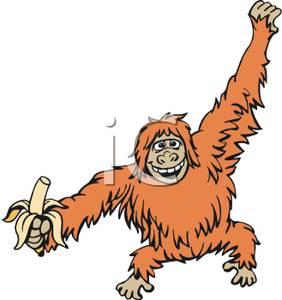Orangutan clipart free banner transparent An Orangutan | Clipart Panda - Free Clipart Images banner transparent