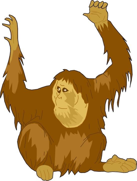 Orangutan clipart free clipart free library Orangutan Clipart Free | Free download best Orangutan Clipart Free ... clipart free library