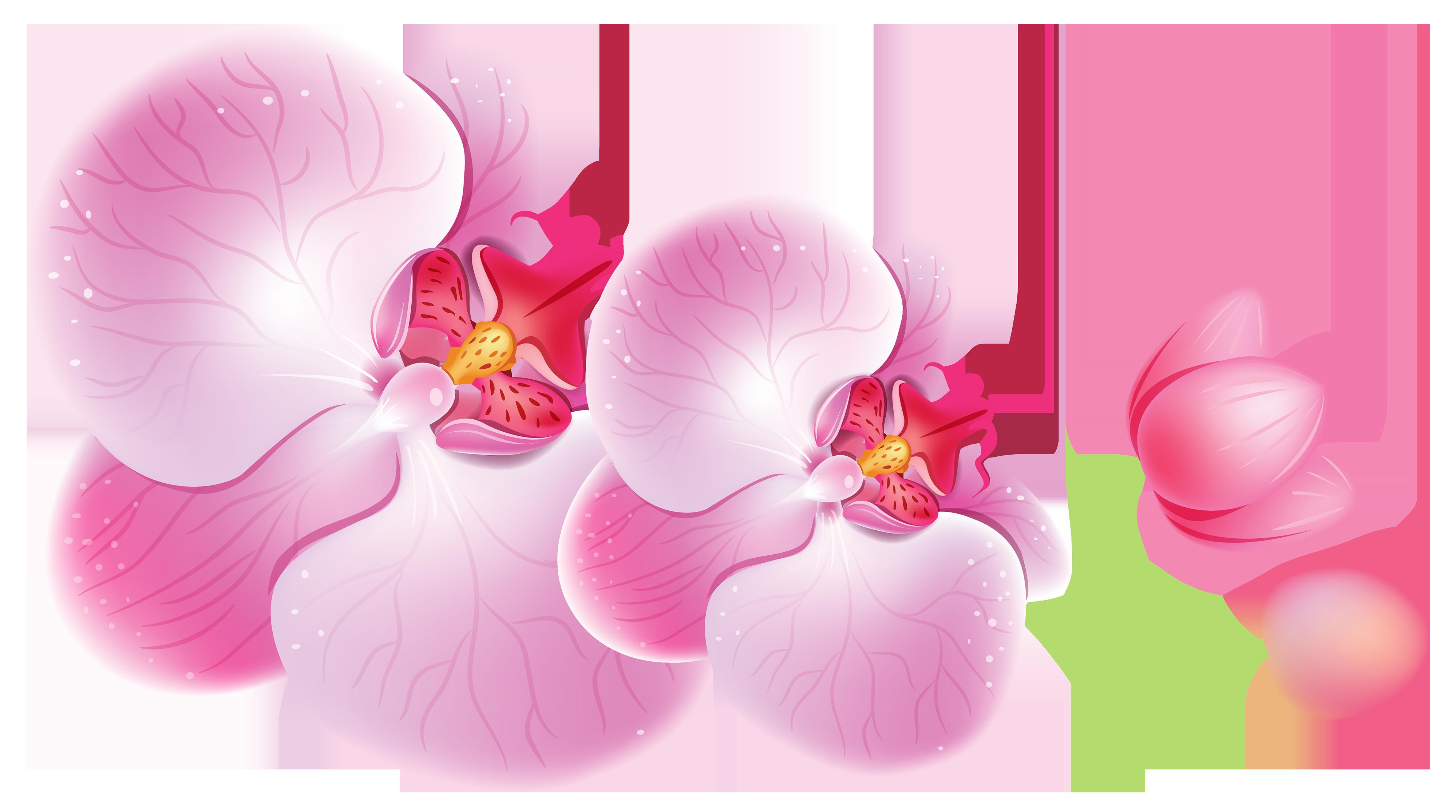 Orchid clipart images svg Orchids PNG Clipart - Best WEB Clipart svg