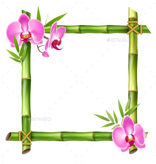 Orchid border clipart vector free download Green Bamboo Frame with Pink Orchid Flowers | H | Pink ... vector free download