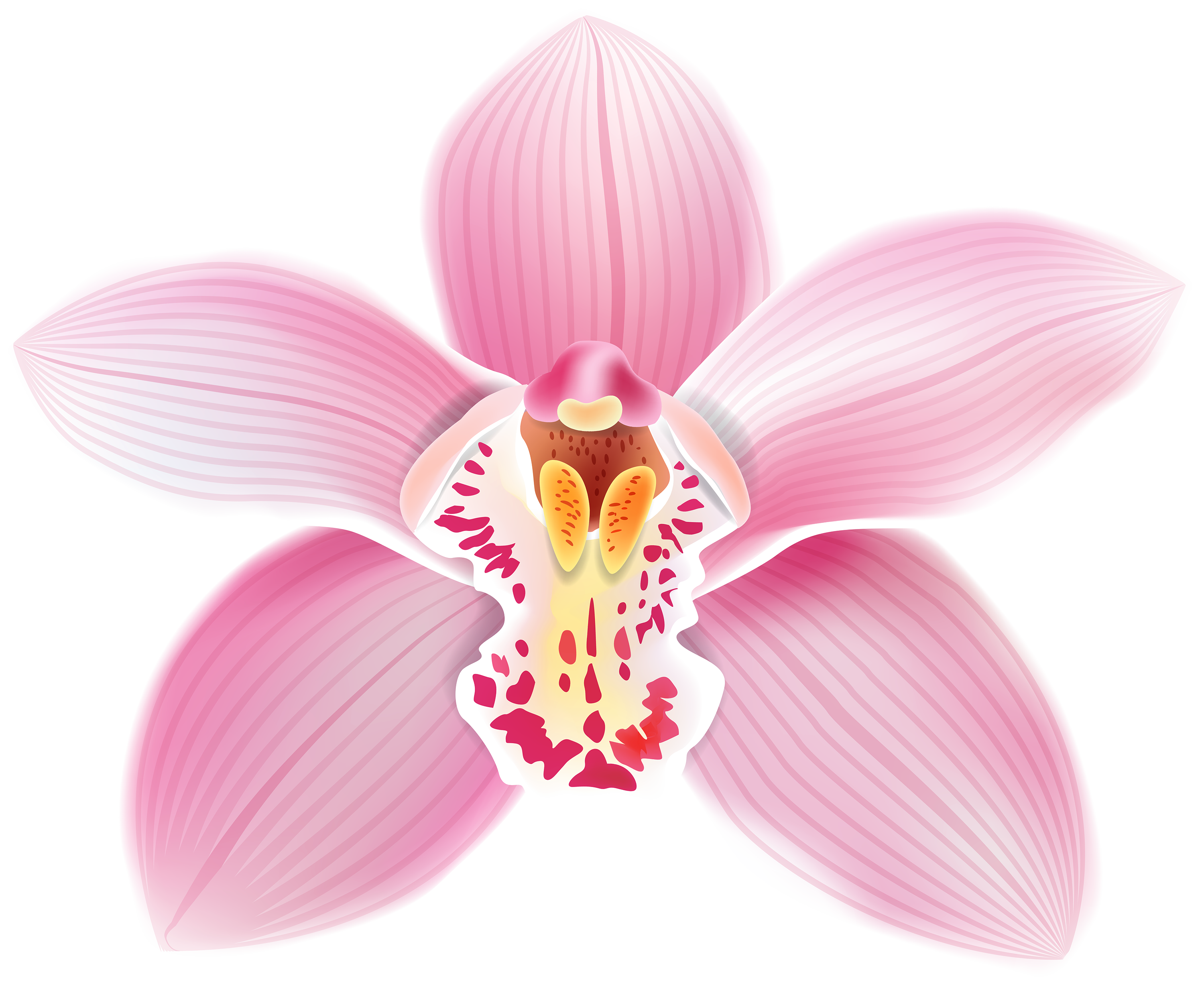 Orchid flower clipart clipart freeuse stock Pink Orchid PNG Clipart - Best WEB Clipart clipart freeuse stock