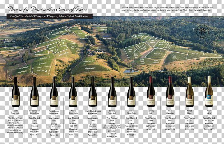Oregon pinot vineyard clipart jpg transparent stock WillaKenzie Estate Pinot Noir Oregon Wine Willamette Valley ... jpg transparent stock