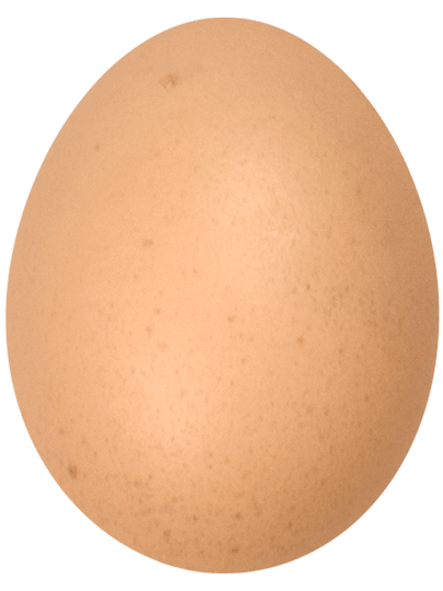 Organic eggs for sale clipart banner freeuse stock Pace Farm   The Enjoyable Egg banner freeuse stock