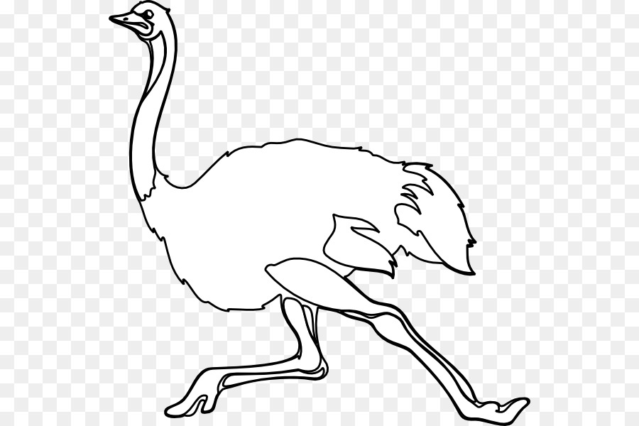 Ostrich black and white clipart graphic library download Book Black And White png download - 594*600 - Free ... graphic library download