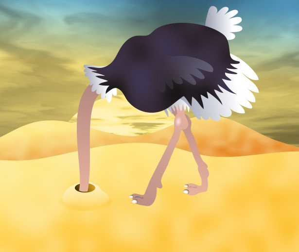 Ostrich with head in the sand clipart svg black and white stock Ostrich Clip Art Free Stock Photo - Public Domain Pictures svg black and white stock