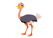 Ostritch clipart graphic freeuse download Search Results for ostrich - Clip Art - Pictures - Graphics ... graphic freeuse download