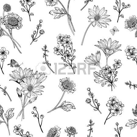 Outline images of flowers clip transparent stock Outline Flower Stock Photos & Pictures. Royalty Free Outline ... clip transparent stock