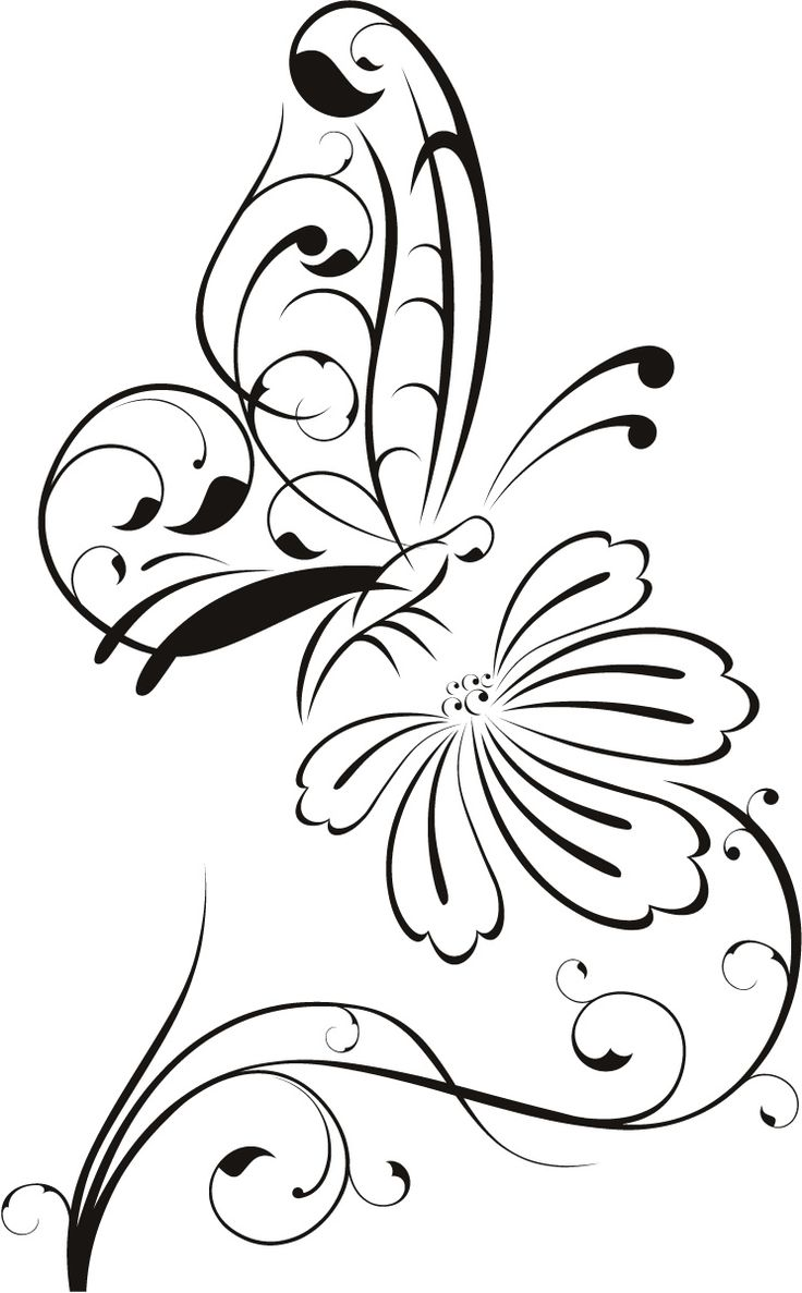 Outline images of flowers graphic black and white 17 best ideas about Flower Outline on Pinterest | Flower outline ... graphic black and white