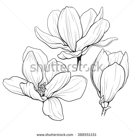 Outline images of flowers black and white download Flower Outline Stock Images, Royalty-Free Images & Vectors ... black and white download