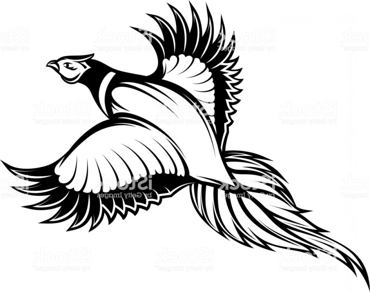 Outline of a pheasant in flight clipart vector Vector Illustration Of A Stylish Monochrome Flying Pheasant ... vector