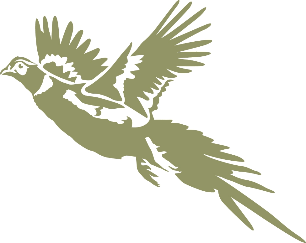 Outline of a pheasant in flight clipart transparent download Free Pheasant Cliparts, Download Free Clip Art, Free Clip ... transparent download