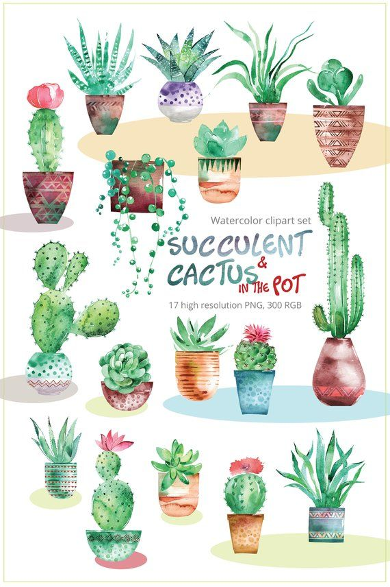 Outside house cactus clipart free to use library Succulent Cactus with pots clipart set   Watercolor Clip Art ... library