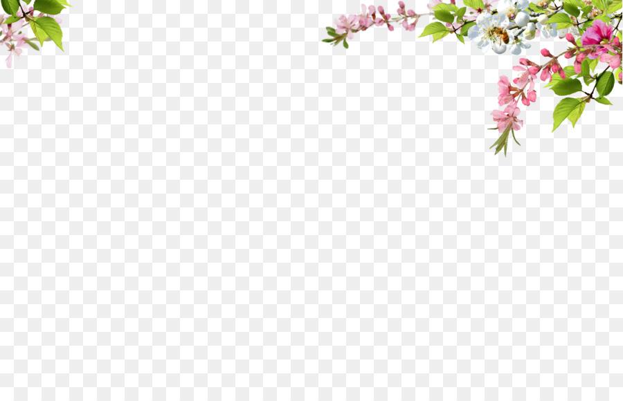 Overlays photoshop clipart png download Floral Design Border clipart - Flower, Pink, Pattern ... png download