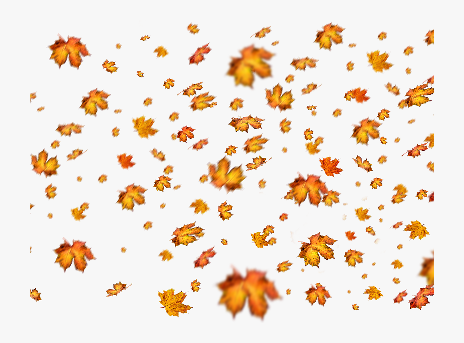 Overlays photoshop clipart vector library Fall Leaves Png Overlay For Photoshop - Autumn Leaves ... vector library