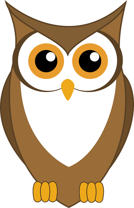 Owl and pumpkin clipart picture Collection of Cartoon Pics Of Owls | Buy any image and use it for ... picture