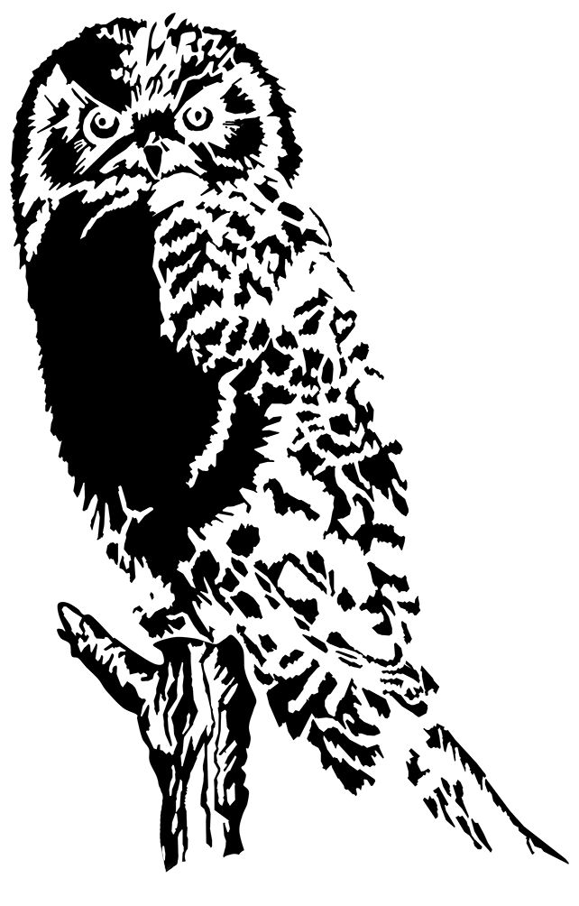 Owl book black and white clipart image royalty free download Owl Clip Art image royalty free download