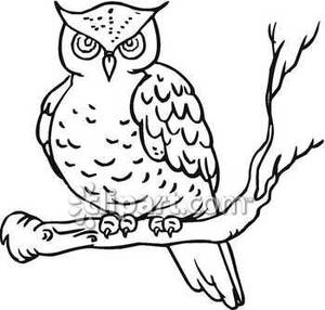 Owl clipart free black and white clip black and white stock 17+ Owl Clipart Black And White   ClipartLook clip black and white stock