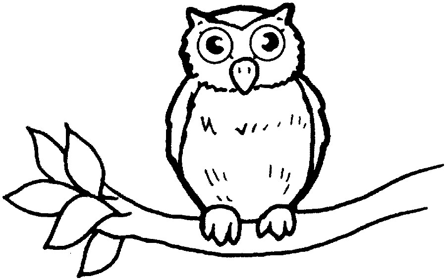 Owl clipart outline banner free library Free Owl Outline, Download Free Clip Art, Free Clip Art on ... banner free library