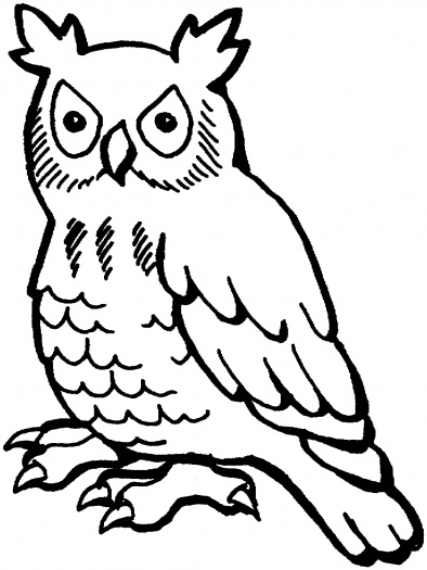 Owl clipart outline vector library download Free Owl Outline, Download Free Clip Art, Free Clip Art on ... vector library download