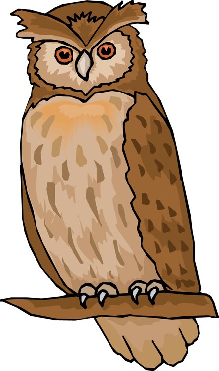 Owl turkey clipart clipart royalty free clipart of owl free owl clipart animations - hatenylo.com clipart royalty free