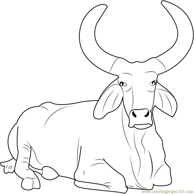 Ox clipart coloring graphic freeuse download Book Black And White clipart - Ox, Drawing, White ... graphic freeuse download
