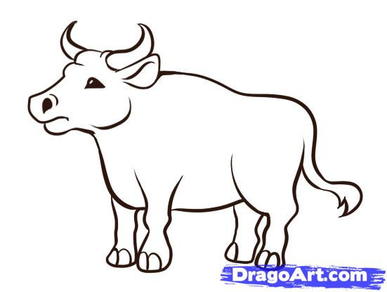 Ox clipart coloring png transparent Free Drawn Ox colouring page, Download Free Clip Art on ... png transparent