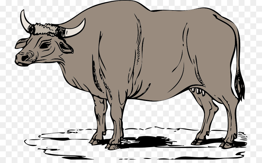 Oxen bull clipart png transparent clip art free stock Cow Background png download - 800*548 - Free Transparent Ox ... clip art free stock
