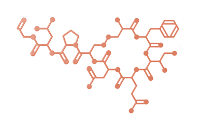 Oxitocin clipart png download Oxytocin on Behance png download