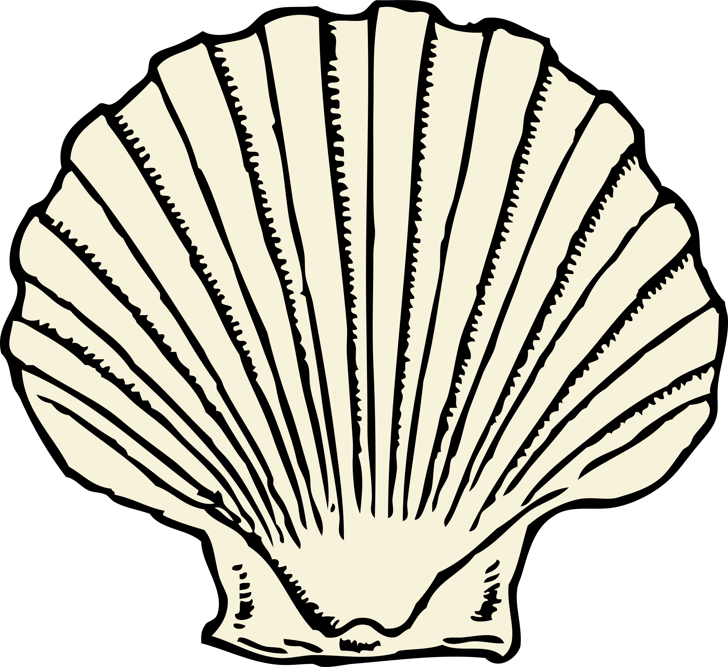 Oyster shell clipart picture transparent library Oyster Shell Drawing   Free download best Oyster Shell ... picture transparent library