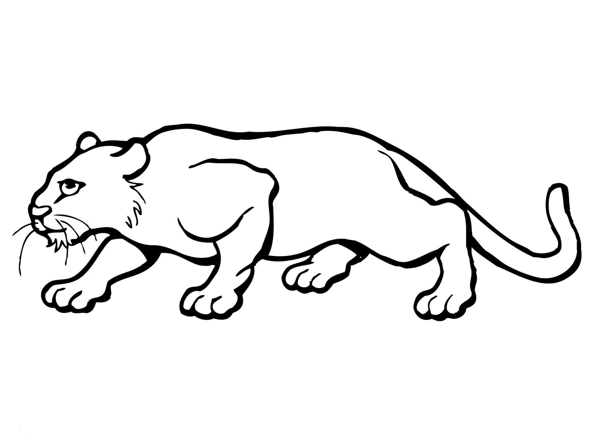 Paclii clipart graphic black and white download Crouching cat lineart - 15 linearts for free coloring on theivrgroup ... graphic black and white download