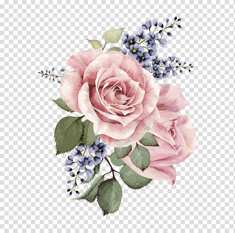 Painted purple roses for corner decorations clipart jpg freeuse Centifolia roses Garden roses Floral design Pink Cut flowers, Hand ... jpg freeuse