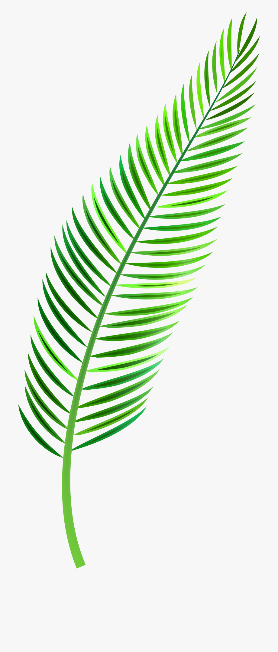 Palm fronds clipart png picture freeuse Palm Leaf Png Clip Art - Tropical Leaf Watercolor Png #8559 ... picture freeuse