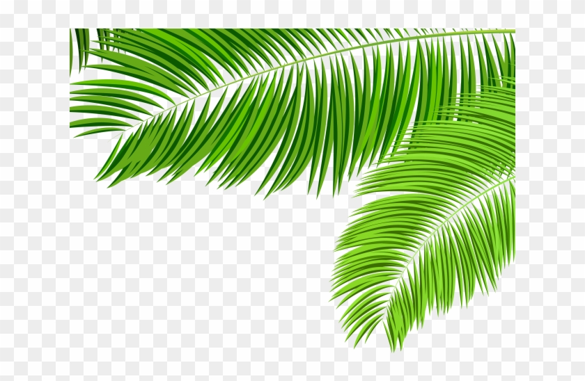Palm fronds clipart png jpg freeuse Palm Tree Clipart Leaves - Palm Tree Leaves Png, Transparent ... jpg freeuse